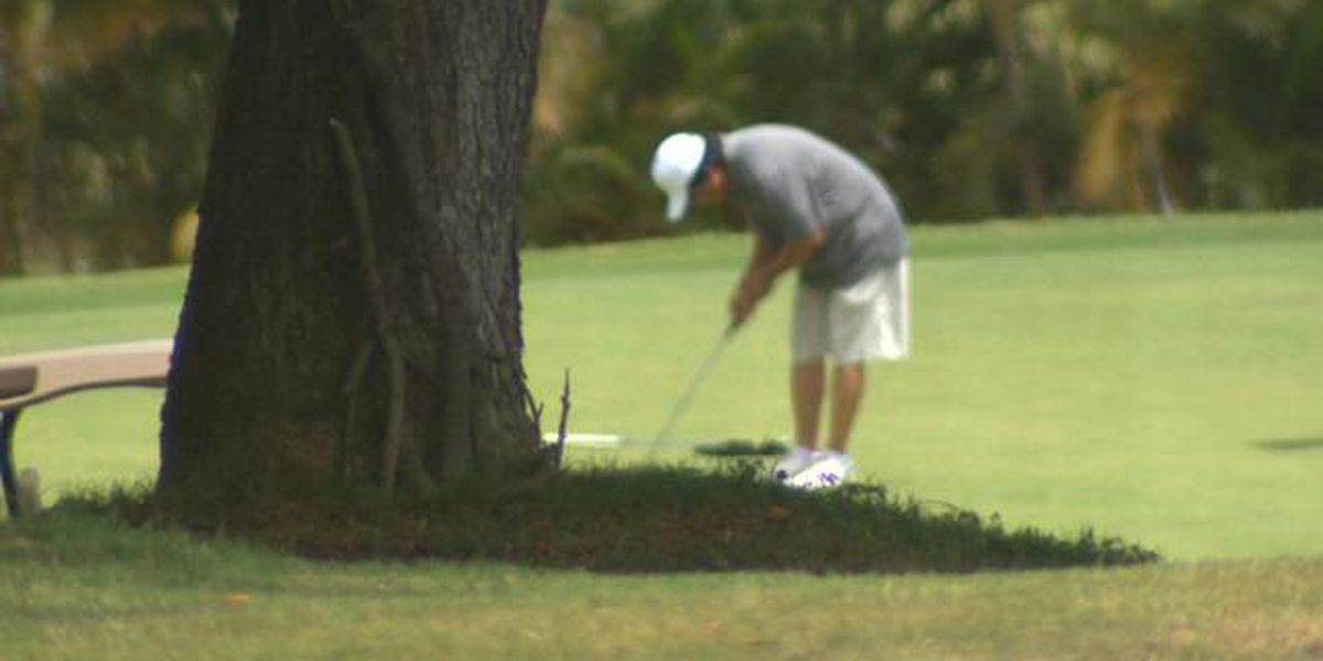 Hawaii ethics panel fines state workers over free golf