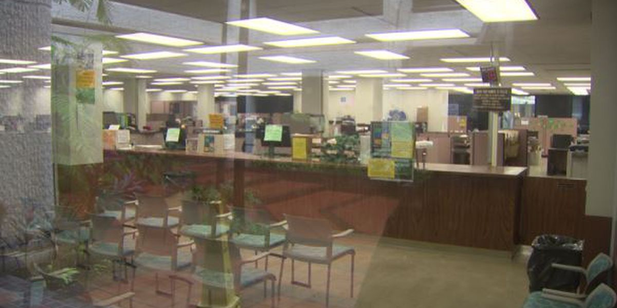 Due to flood of new claims, processing for new unemployment checks could take a month