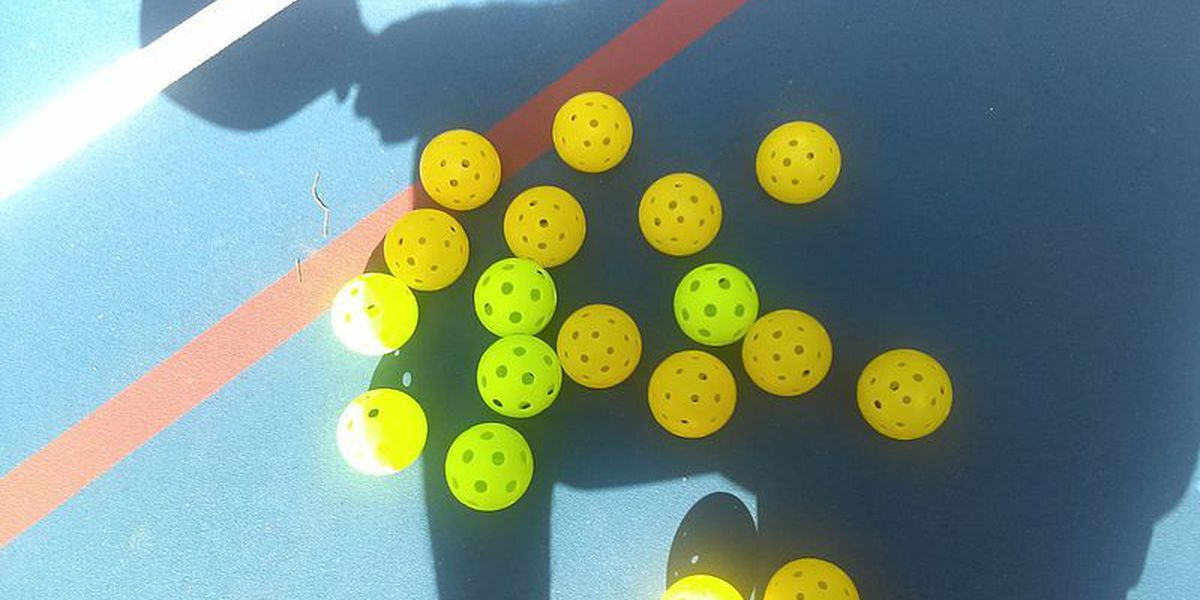 Pickleball tournament to take place on Maui in August
