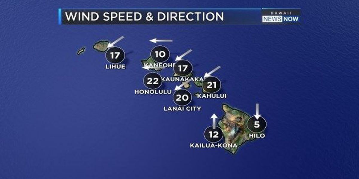 Forecast: Gusty trades and high surf