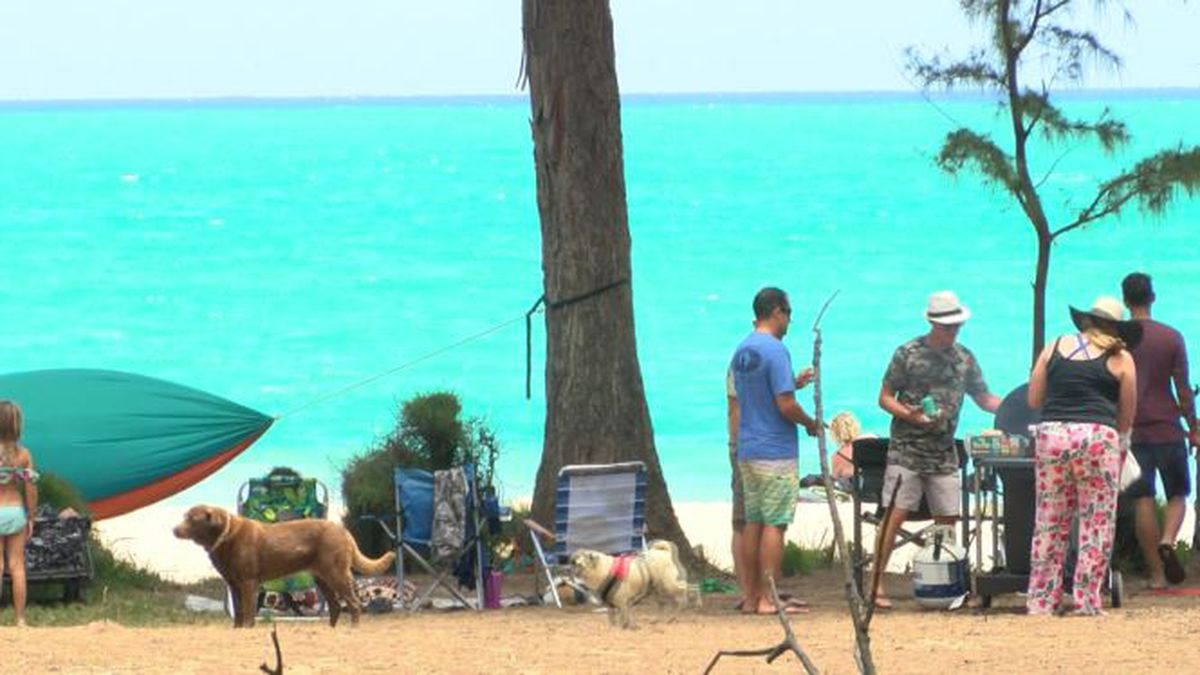 A plan to develop a Waimanalo beach park once had widespread support ... until now