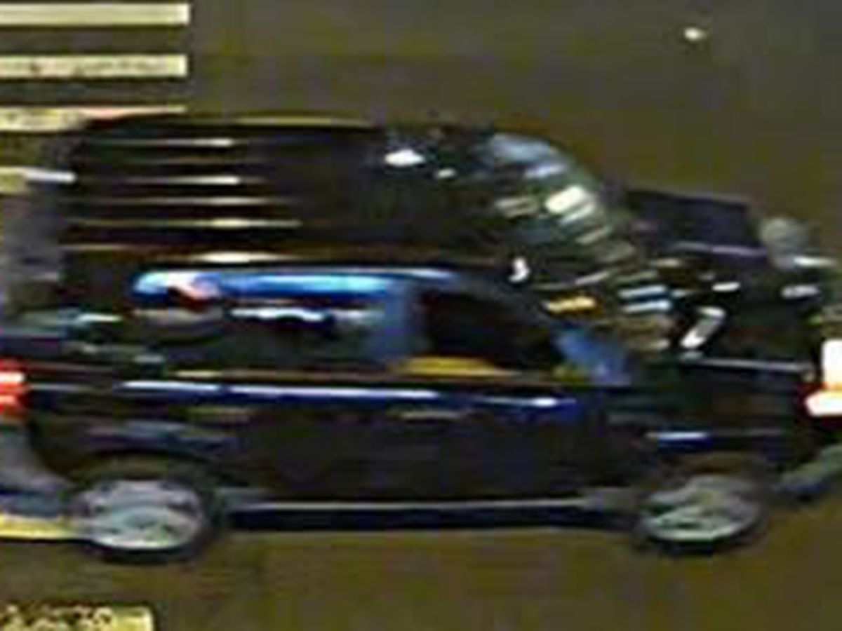 Police ask for public's help in tracking down SUV involved in fatal hit-and-run