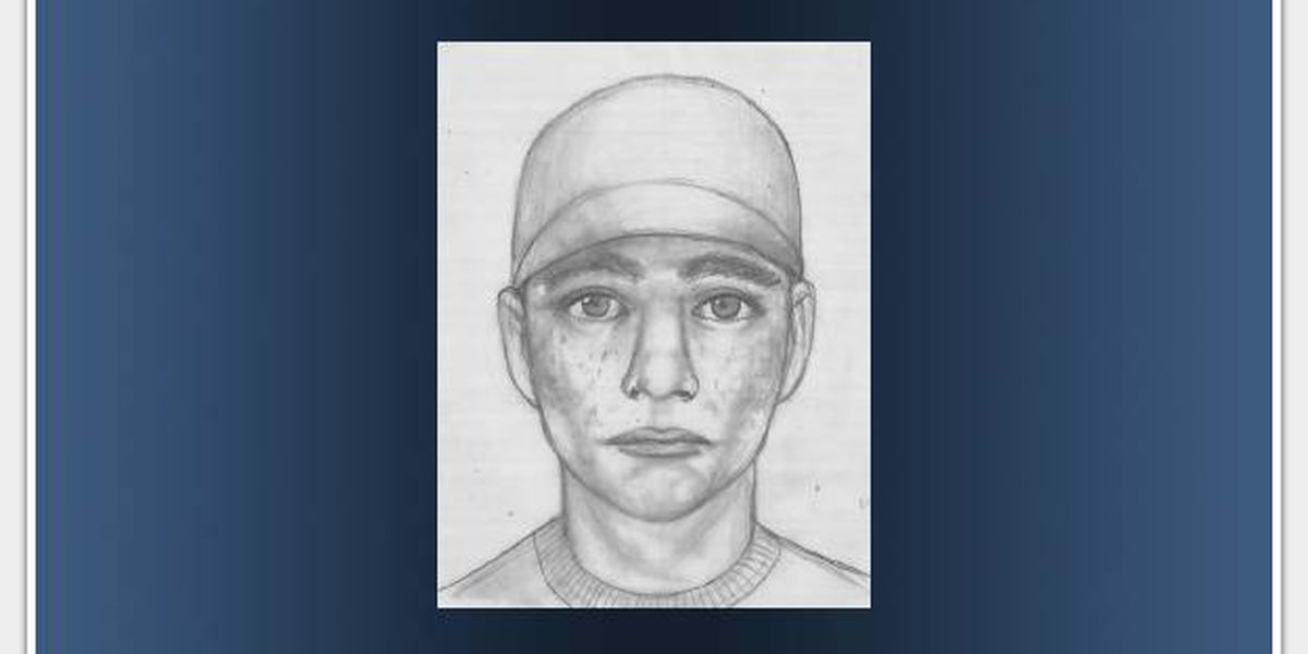 Police search for suspects in armed carjacking in Punaluu