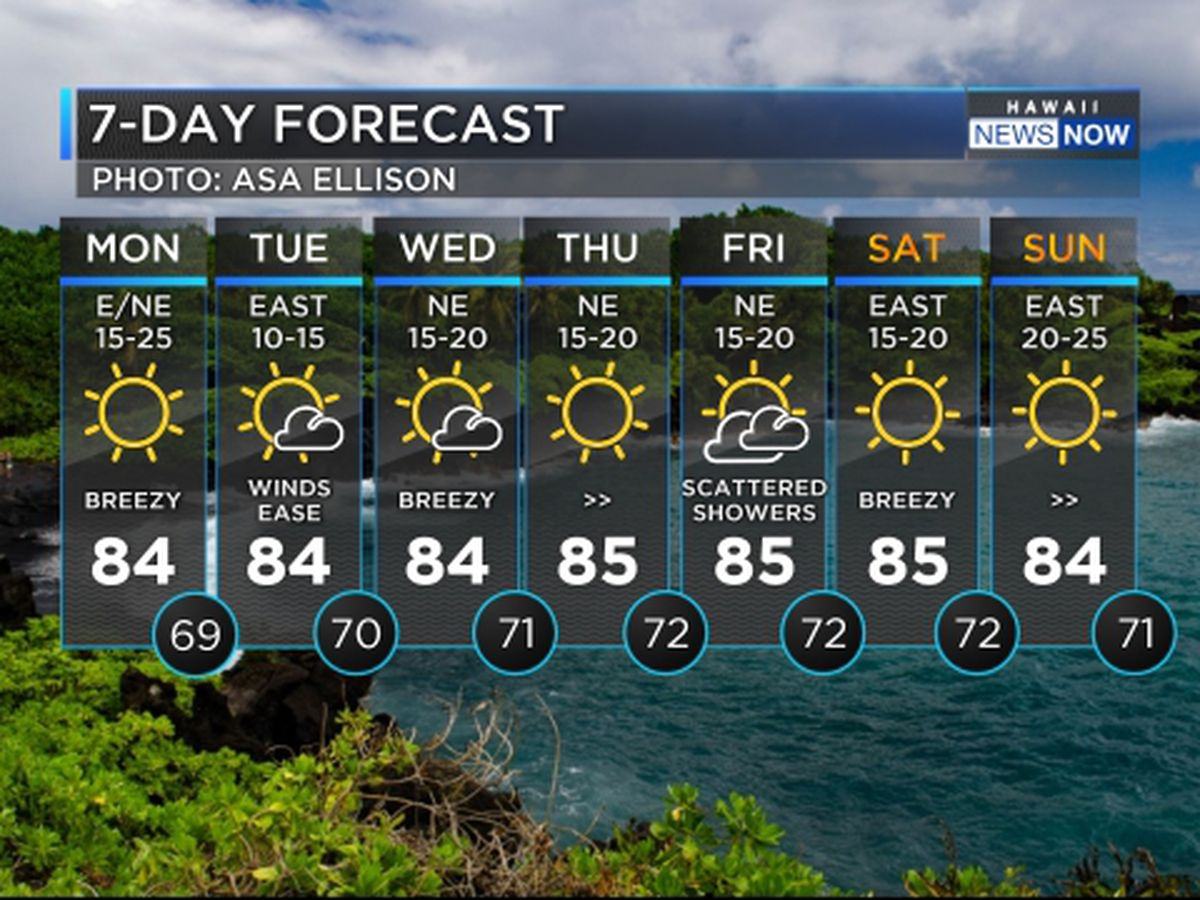 Forecast: Trade winds ease up Tuesday with drier conditions