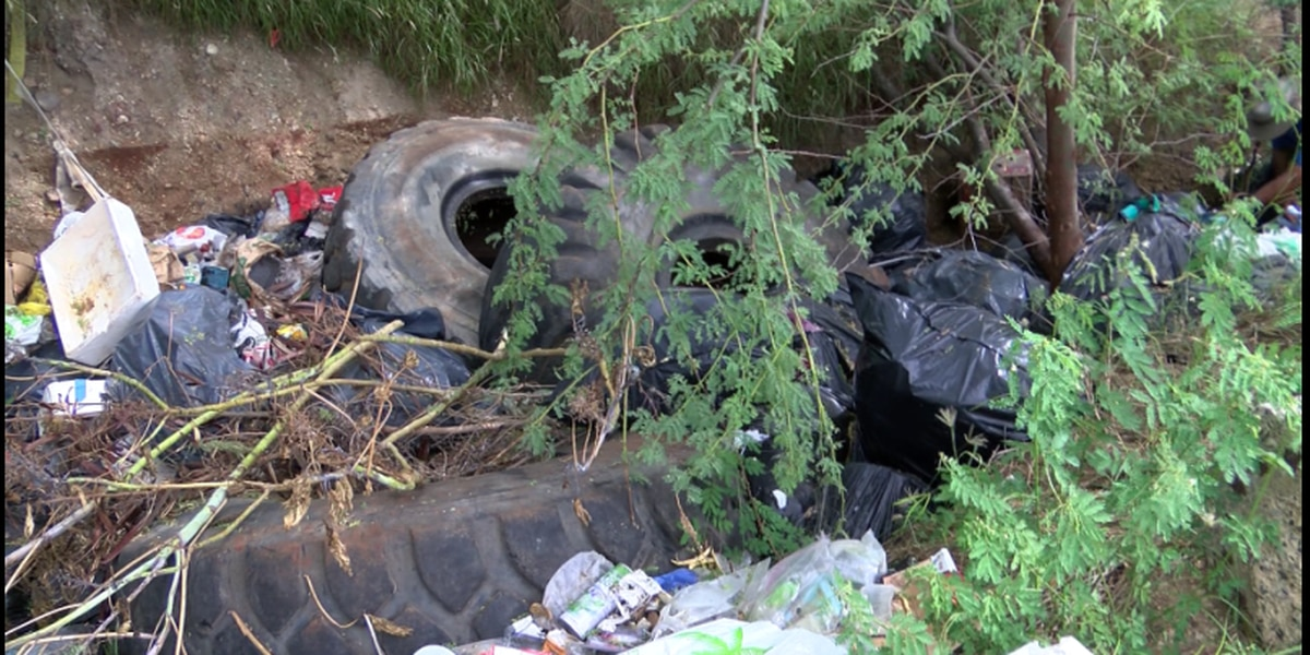 'This is nasty': Illegal dumping plagues Sand Island state park