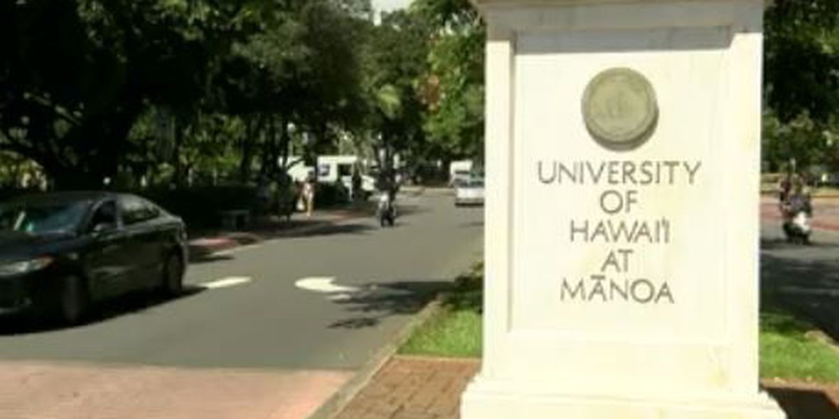Survey shows scope of sex harassment, dating violence at UH