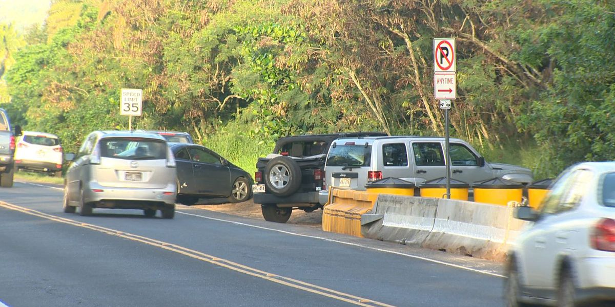 DOT to take up cheaper option to address traffic near Turtle Beach