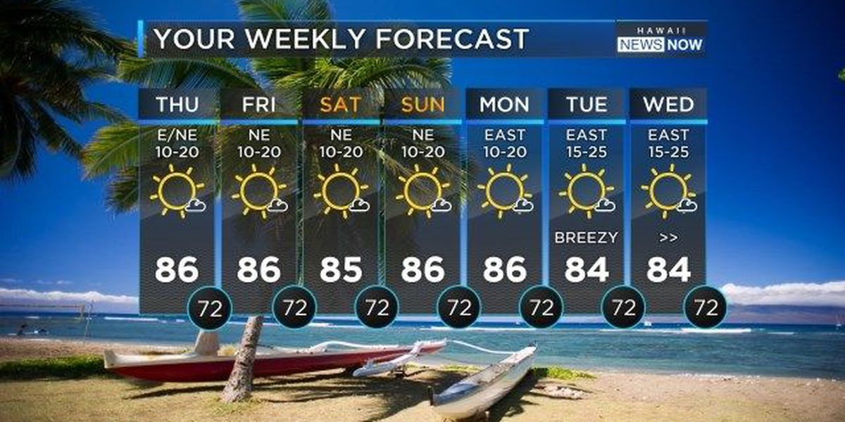 Forecast: Monster swell set to roll in; High Surf Warning in effect