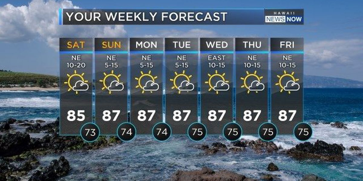 Forecast: Look forward to beautiful tradewind conditions this weekend