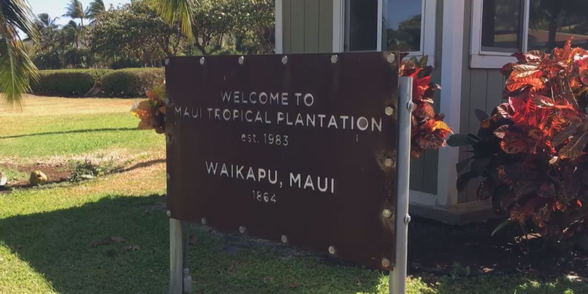Popular Maui visitor attraction closes .... with dim hopes for reopening
