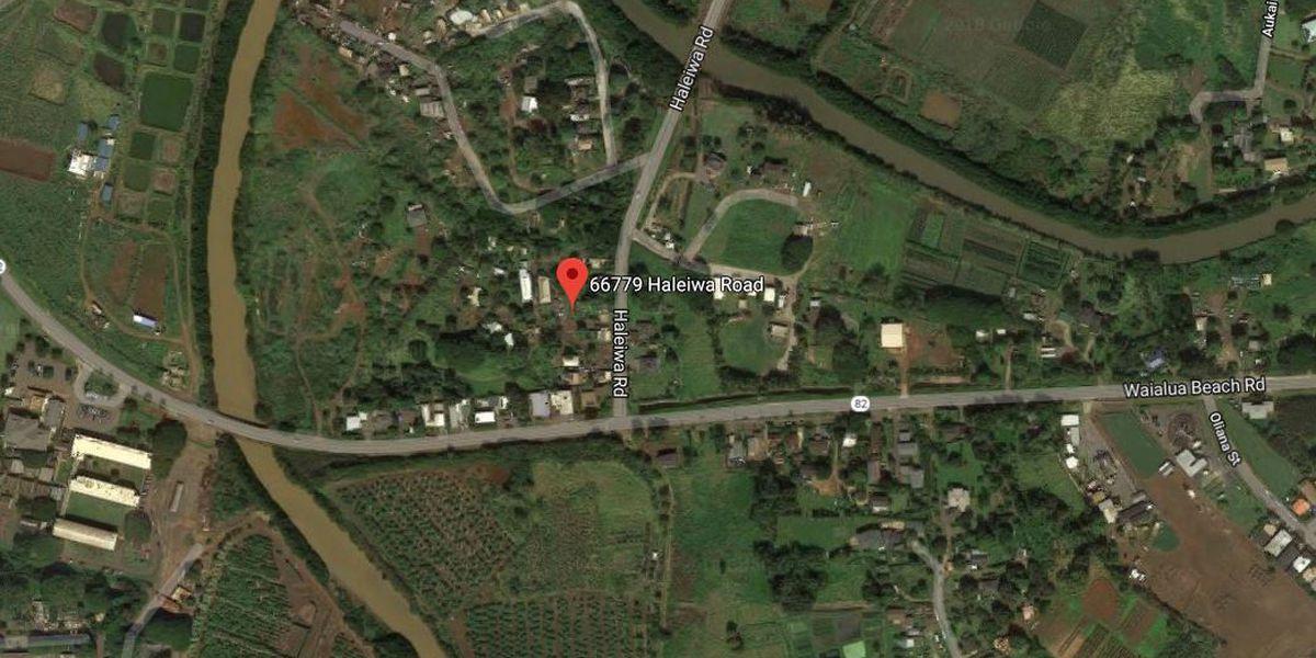 2 pet dogs escape Waialaua house fire unscathed