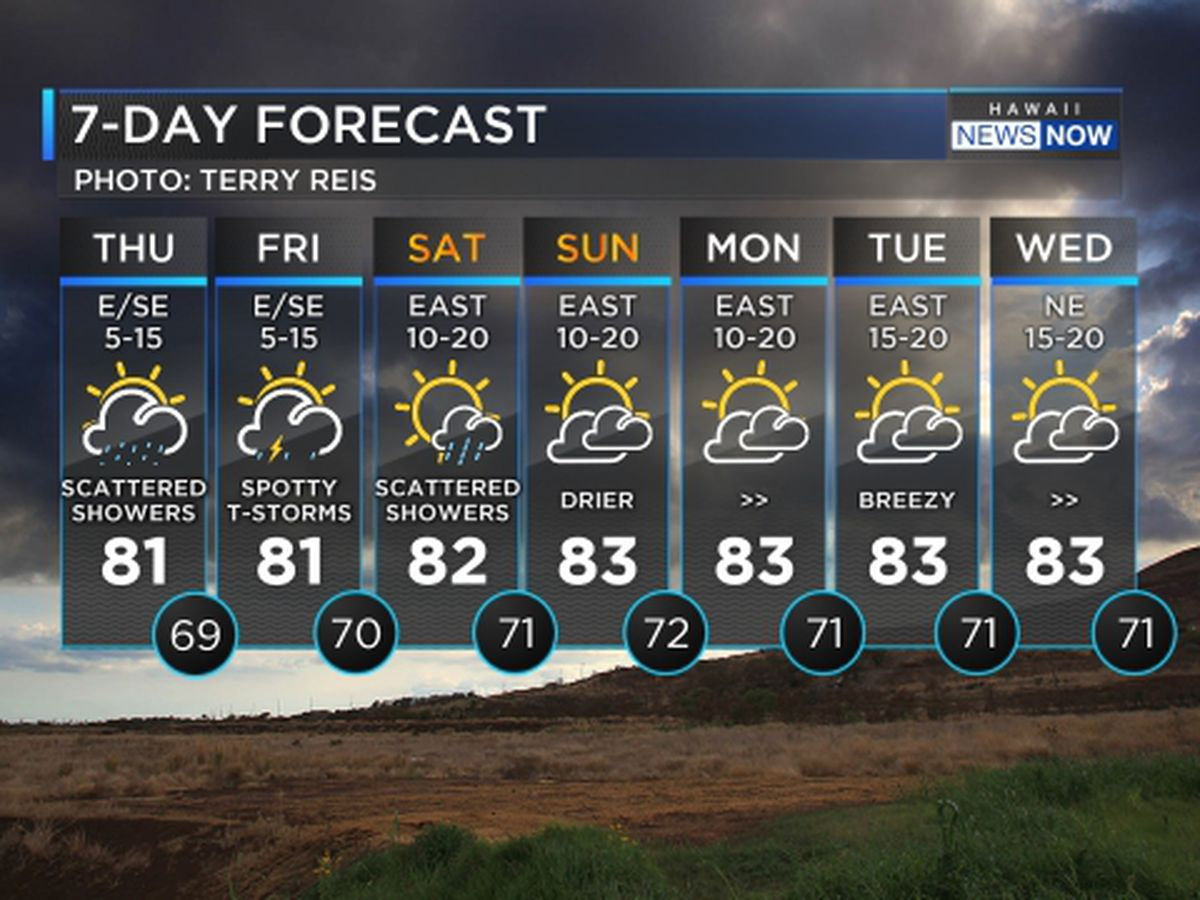 Forecast: Heavy showers, thunderstorms possible through Saturday