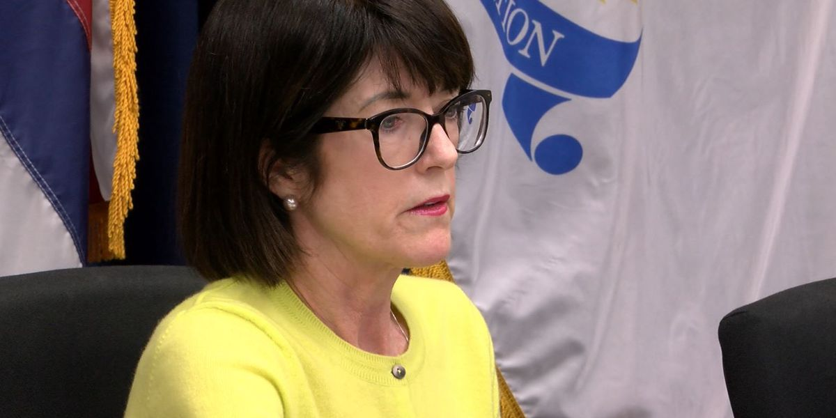 Honolulu Police Commission selects new chair ... and potentially a new direction