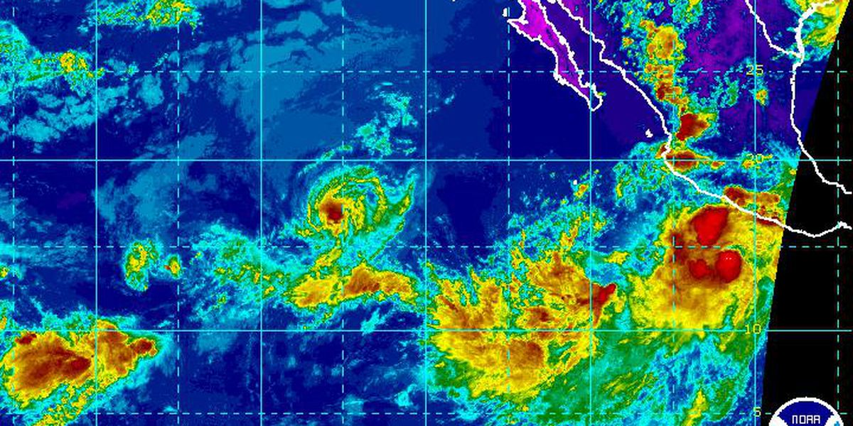 Kiko weakens to a tropical storm as 2 more systems form in the Eastern Pacific