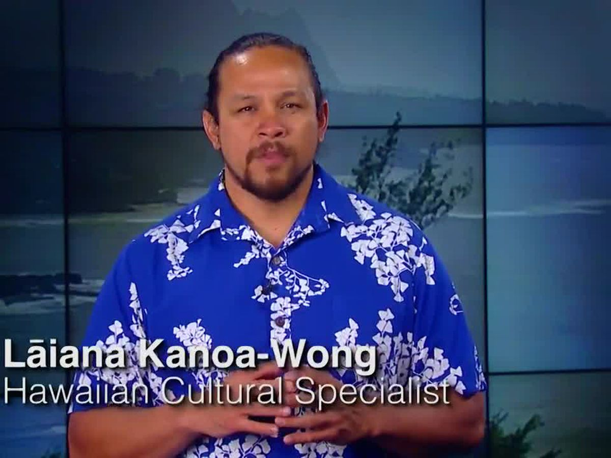 Hawaiian Word: Maiau