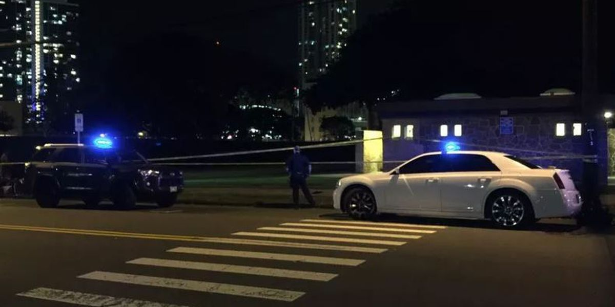 Honolulu police searching for suspect in Thomas Square stabbing