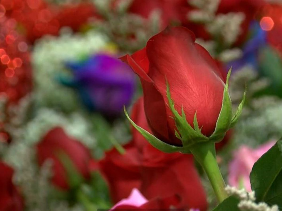 Flower shops across the state are seeing huge turnout for Mother's Day celebrations