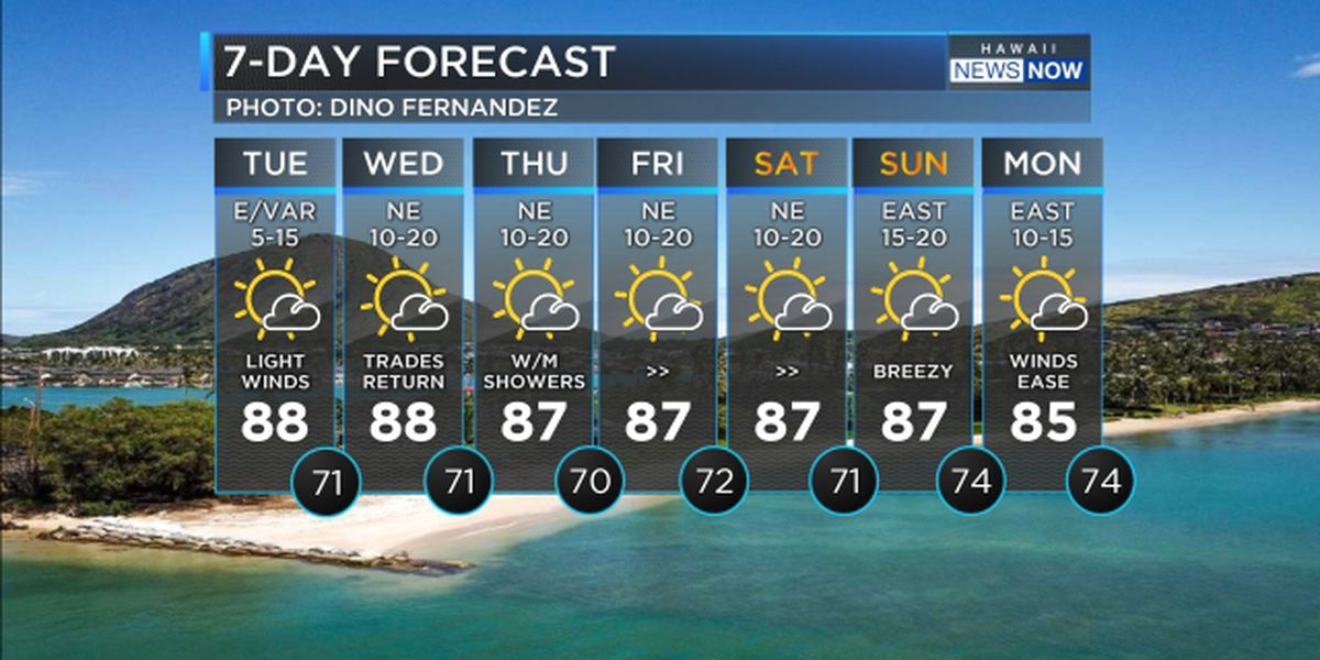 Forecast: Light winds today, but brisk trade winds expected tomorrow