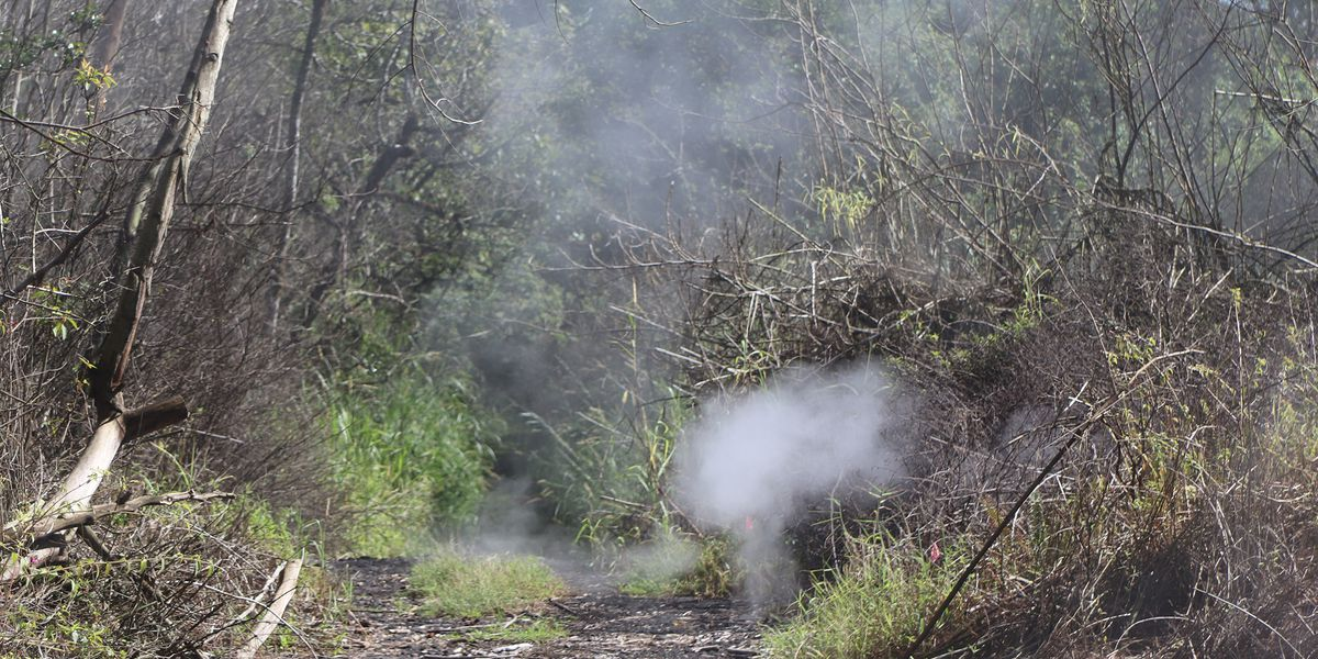 It's been 1 year since the Kilauea eruption ended. But heat and gas are still rising