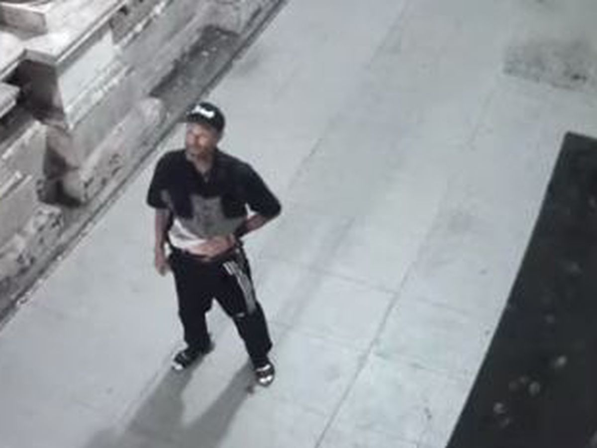 Police release surveillance video of suspect in alleged arson at Supreme Court building