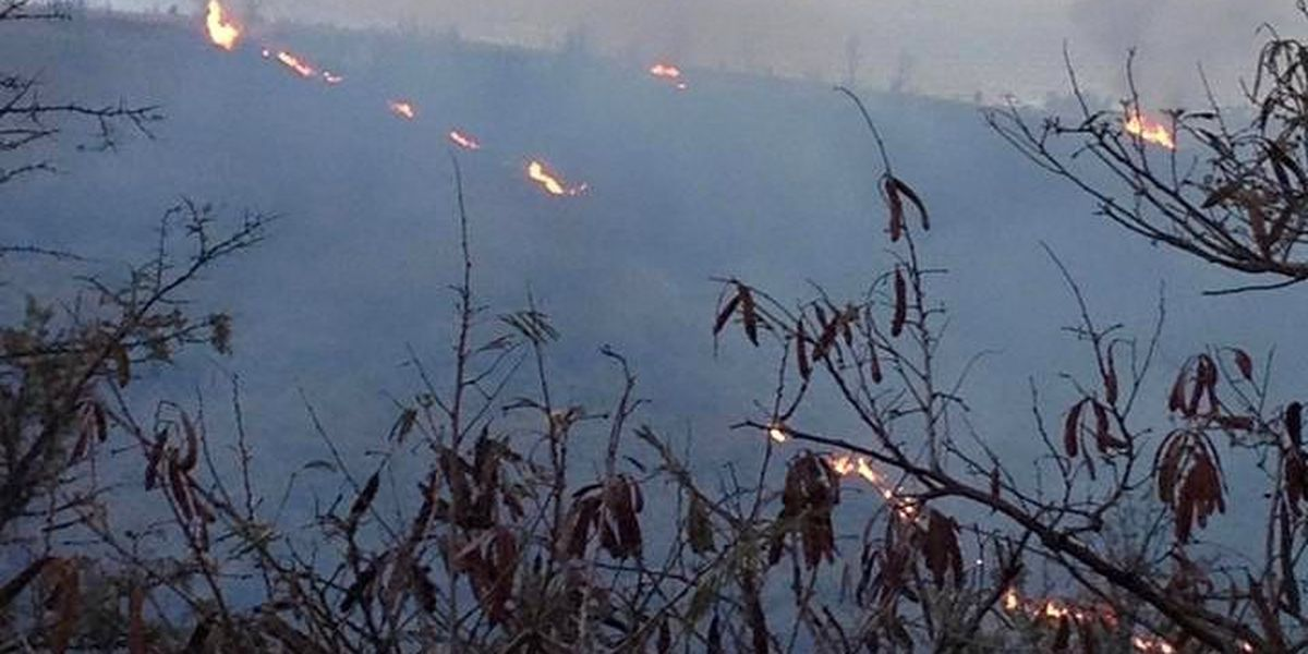 UPDATE: Kokee fire still burning, 40 percent contained