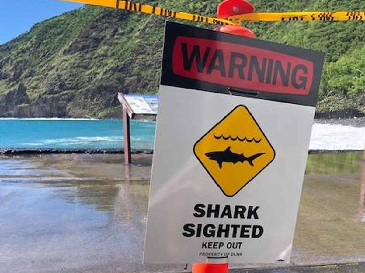 Swimmer seriously injured after Big Island shark bite