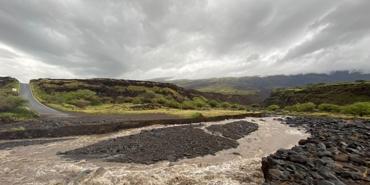Despite devastation in some areas, Maui ranchers found a 'blessing' in recent rains
