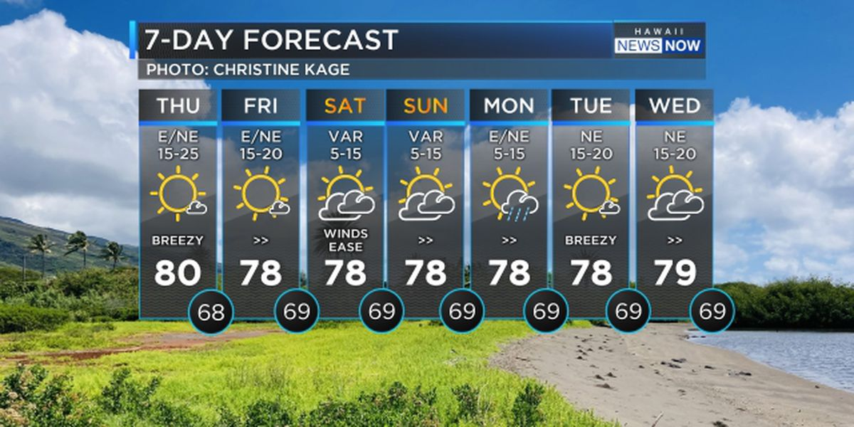 Forecast: Breezy winds to slow down over the weekend