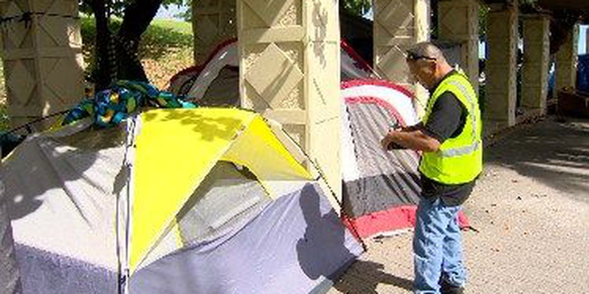 Kakaako homeless camps grow as funding for sweeps dries up