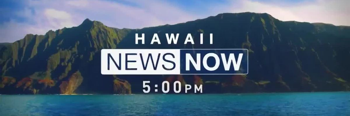 Gov. Ige's latest emergency proclamation for COVID details vaccine passport