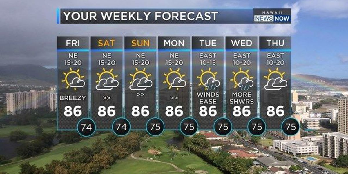 Forecast: Get ready for a breezy and beautiful weekend!
