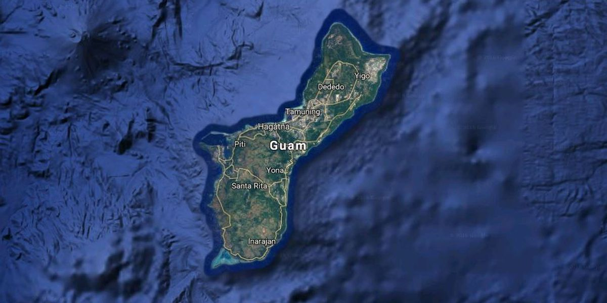 Thousands of stray dogs roam on Guam, strain resources