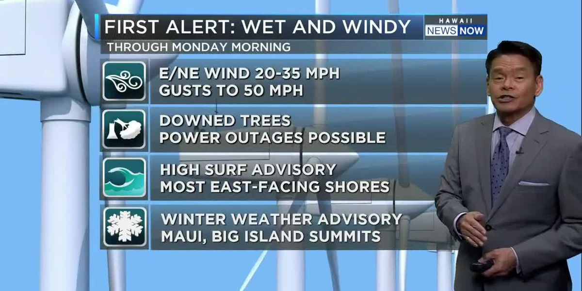 Forecast: Wet and windy weekend ahead