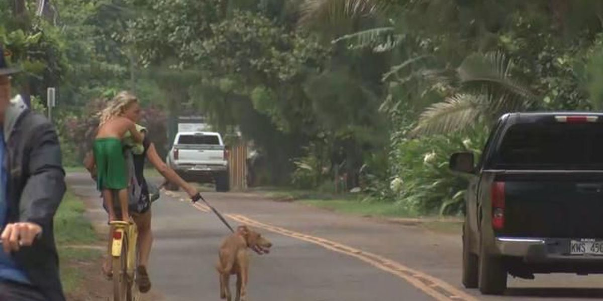 Post-storm rebuilding gives Kauai's North Shore residents a chance to reshape community