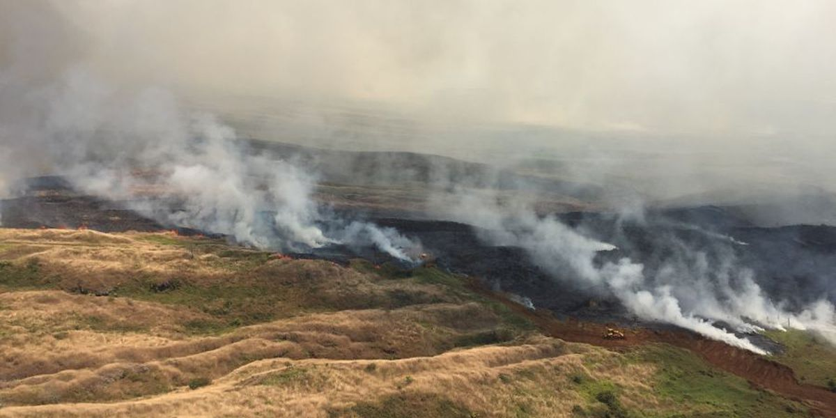 Hawaii, Alaska, Southwest face increased wildfire threat