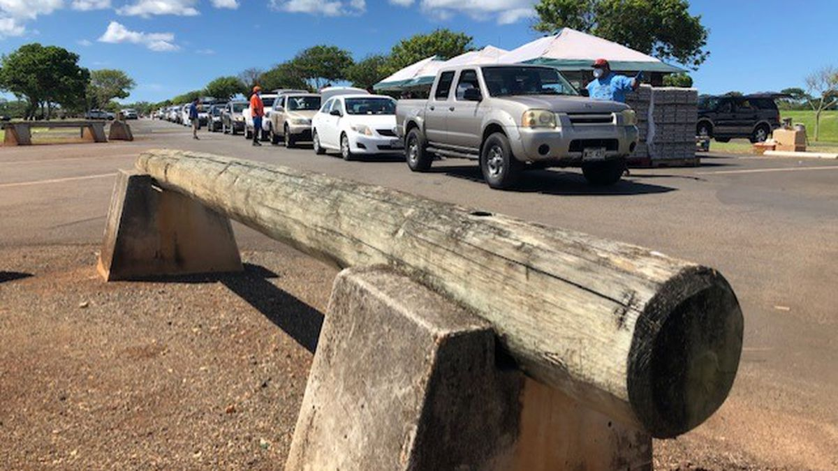 'The numbers are staggering': Waipio food distribution draws hundreds