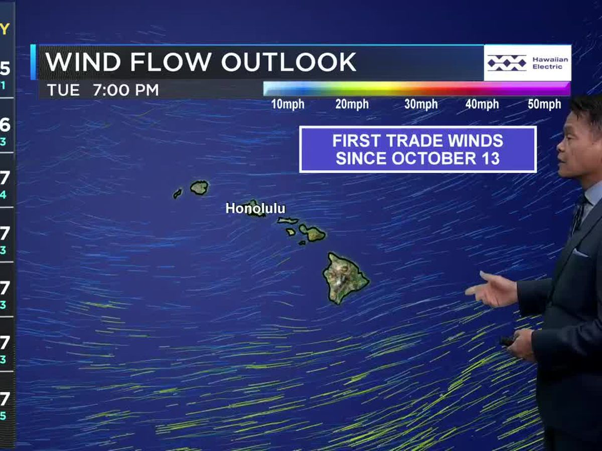 Forecast: Light winds to haunt the Halloween weekend