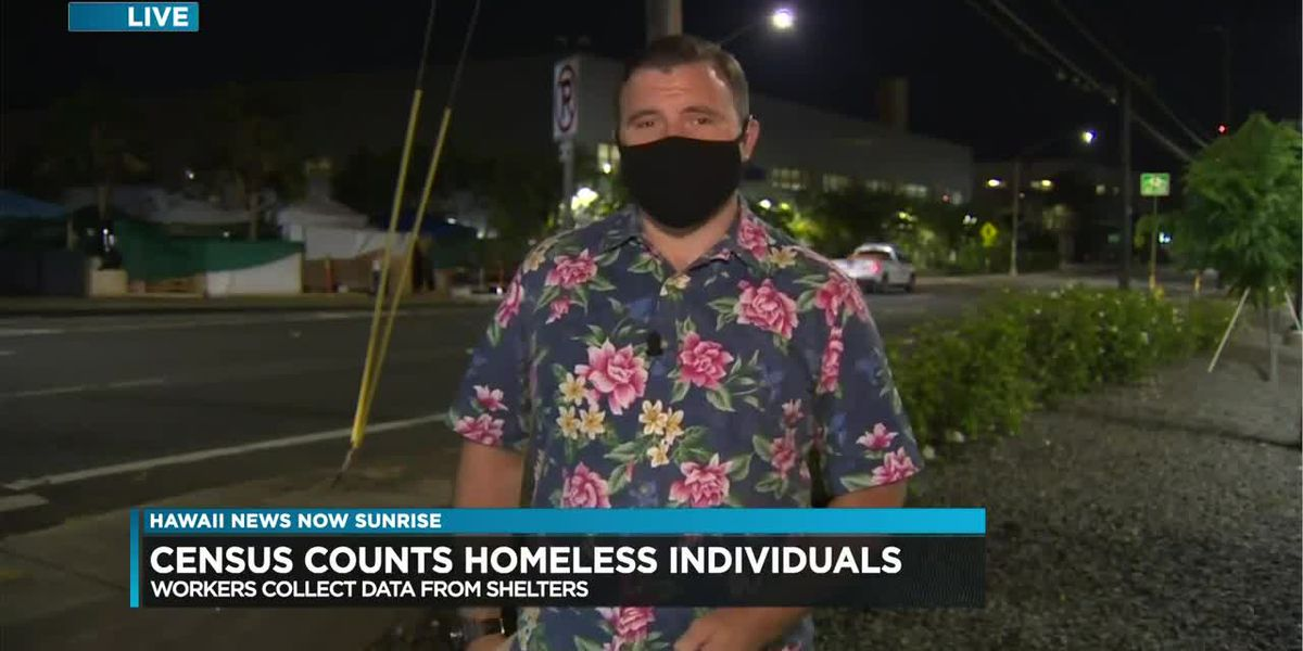 Census workers make progress in counting Hawaii's homeless population