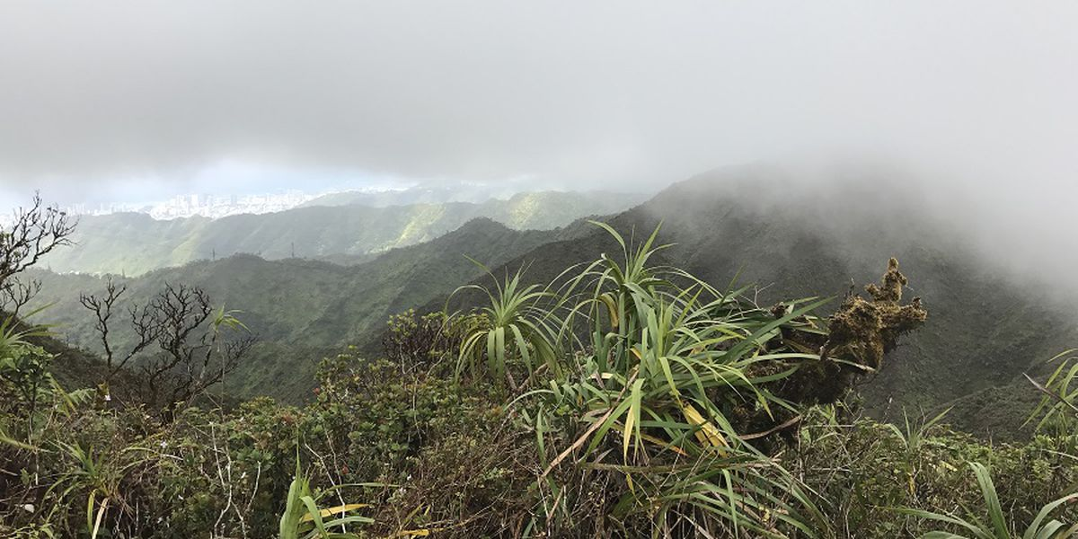 East Oahu hiking trail to re-open ahead of schedule