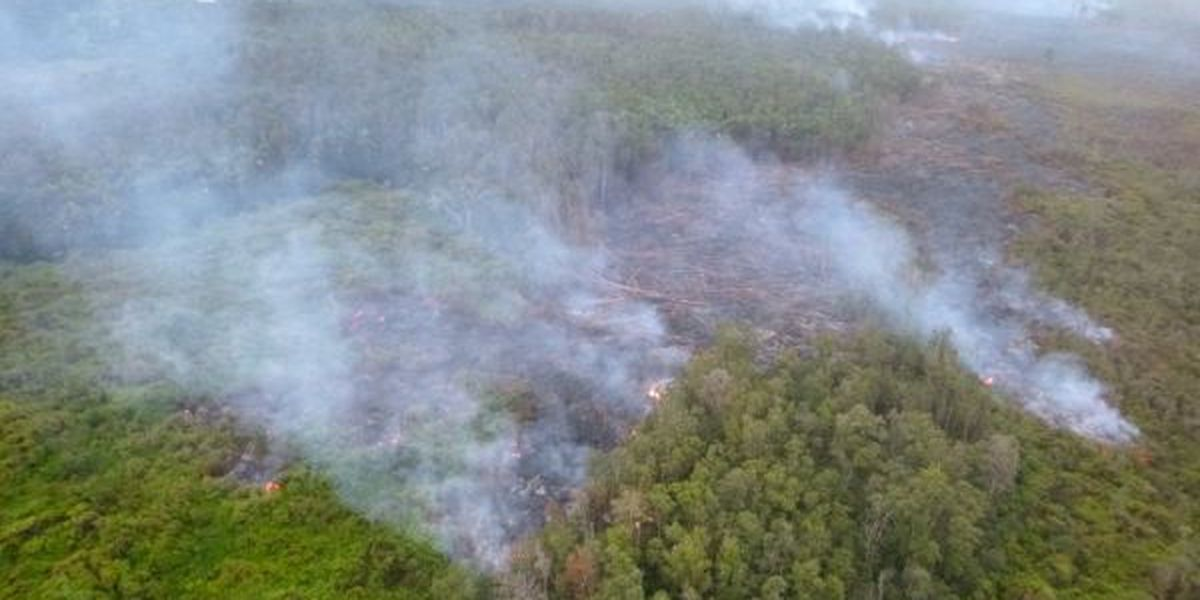 Puna lava flow slows but continues downslope toward Pahoa