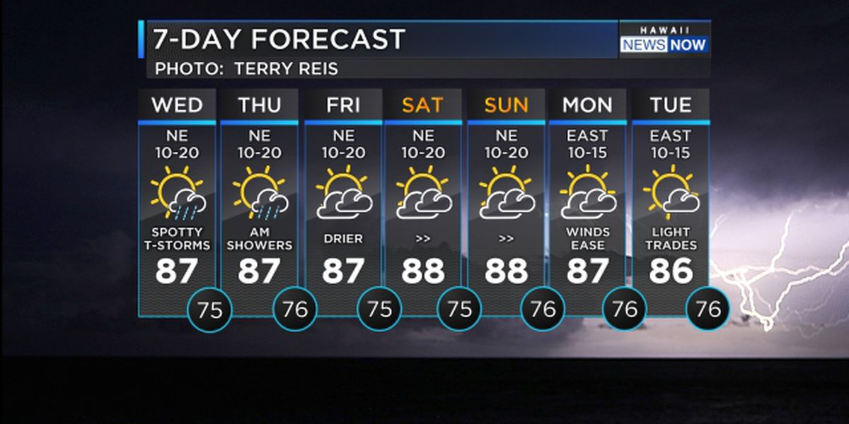 Forecast: Thunderstorms, heavy showers likely for western half of state