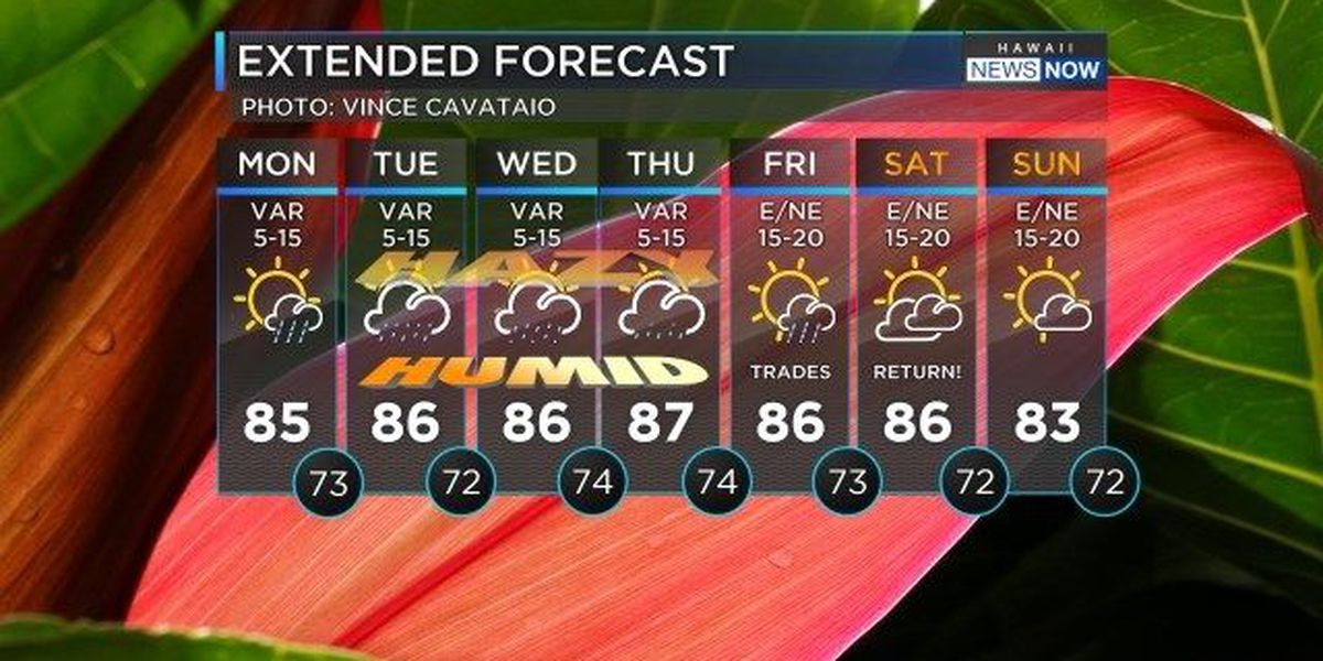 Forecast: Get ready for wetter weather this week