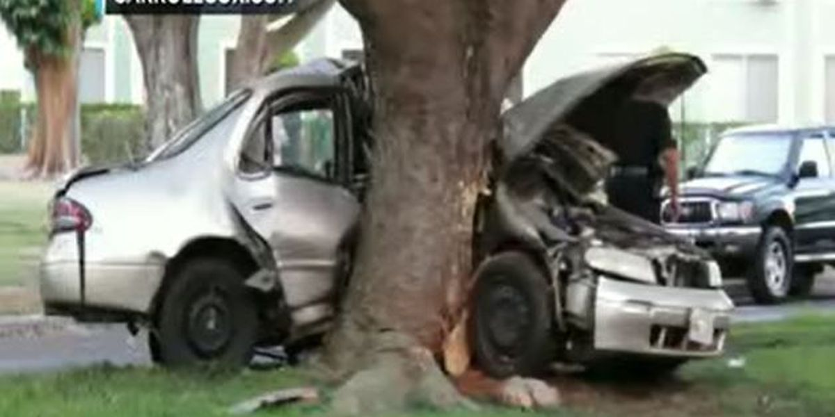 Police: Speed, alcohol likely factors of fatal car crash in Mililani