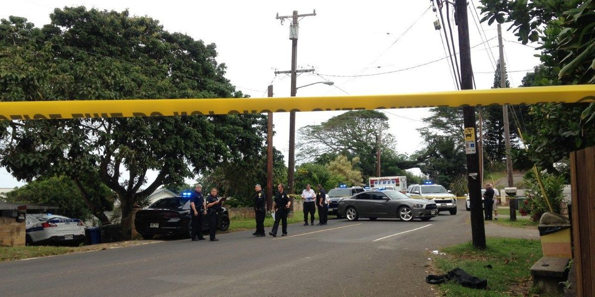 Man arrested after allegedly shooting at officers in Kahaluu