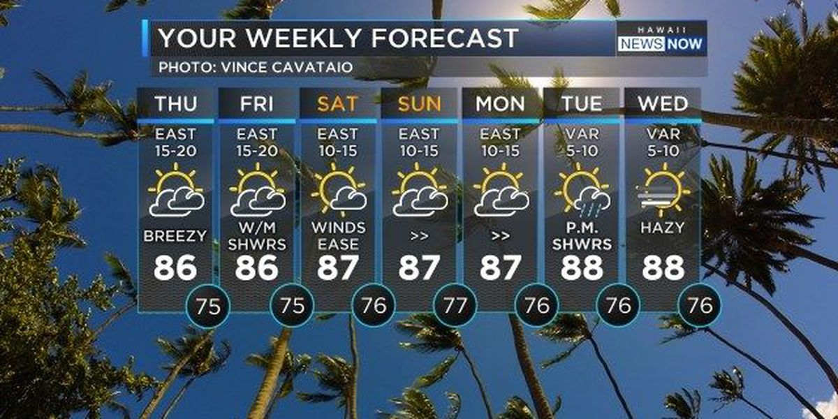 Forecast: Weather settles down, steady trades continue