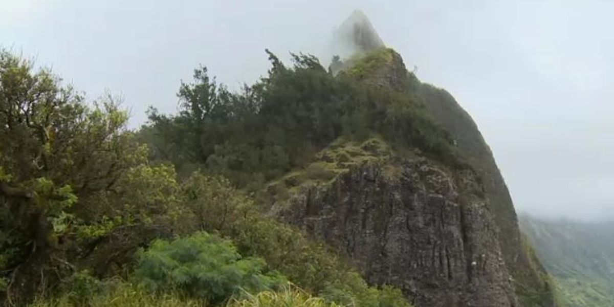 Lack of lavatories leads to unsightly problem at historic Pali lookout