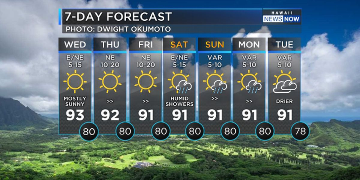 Forecast: Heat wave continues, rain looming for the weekend