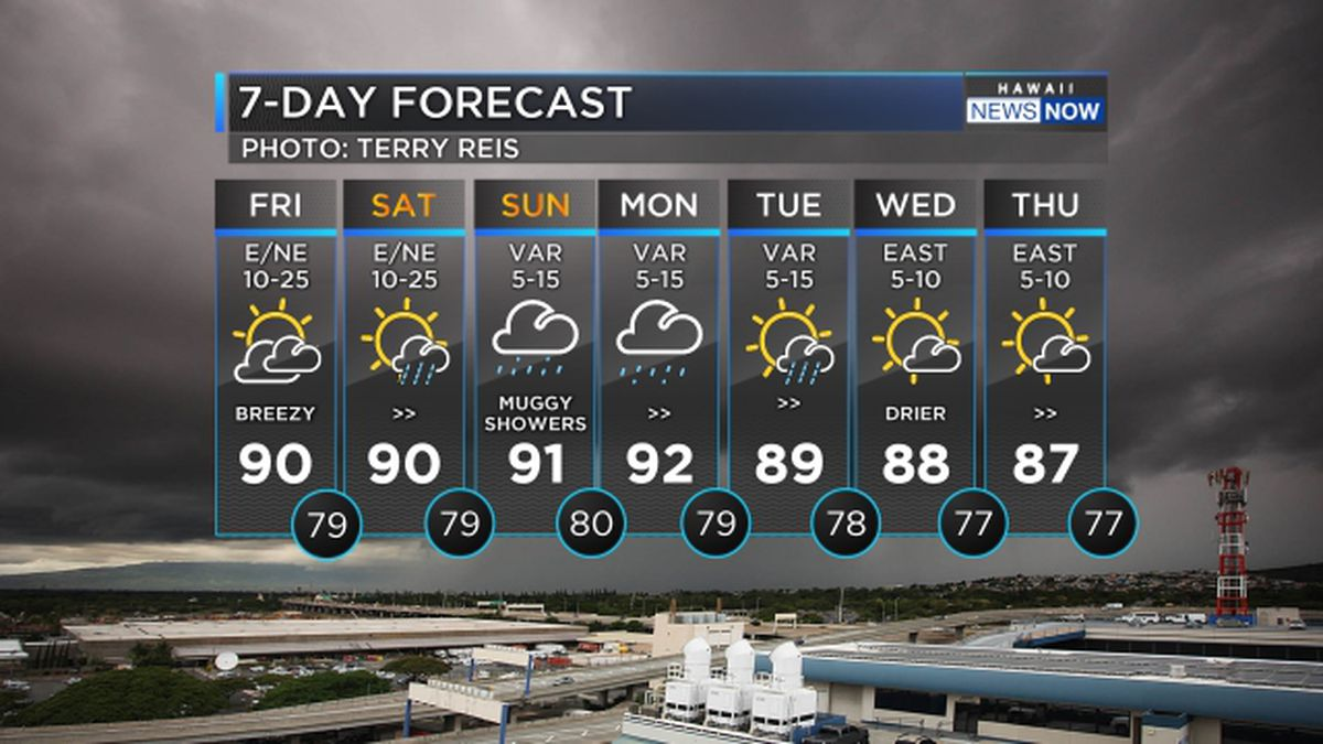 Forecast: Increasing rain, humidity for the weekend