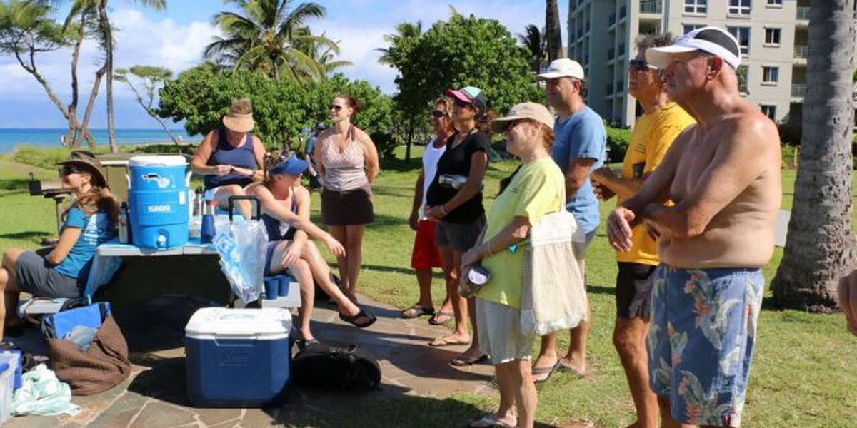 Volunteers statewide learn to spot coral bleaching