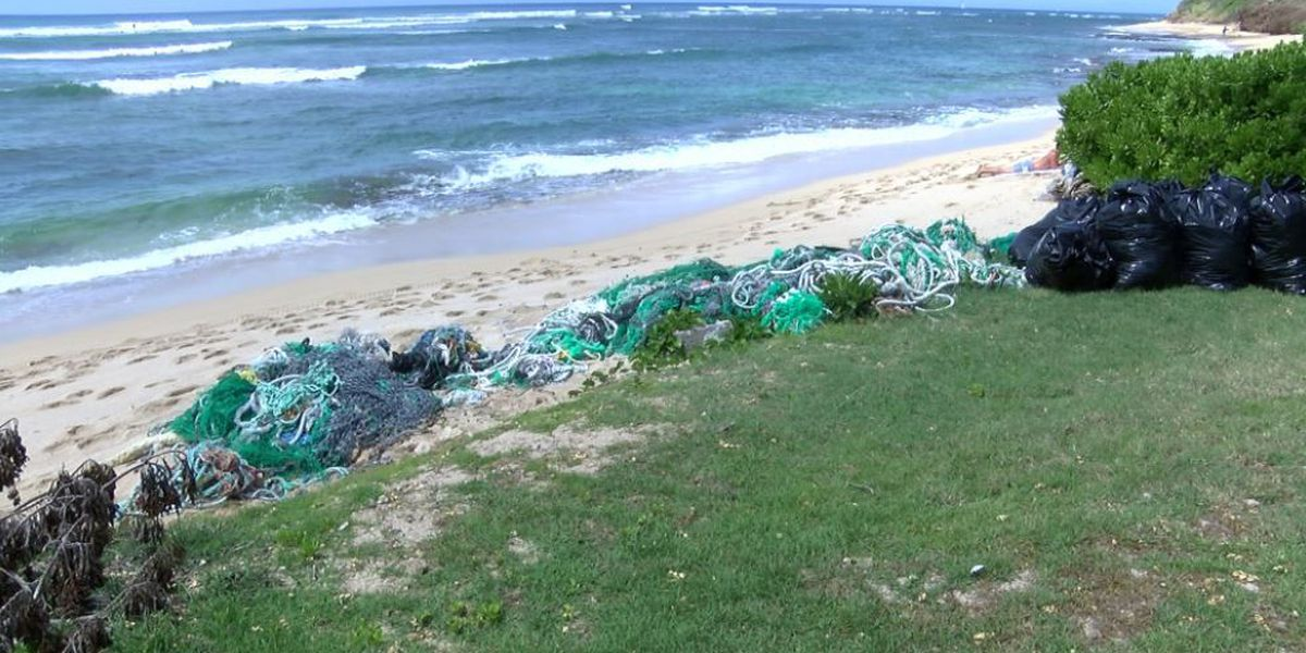 Community clean up planned for a mass of nets at a Diamond Head beach